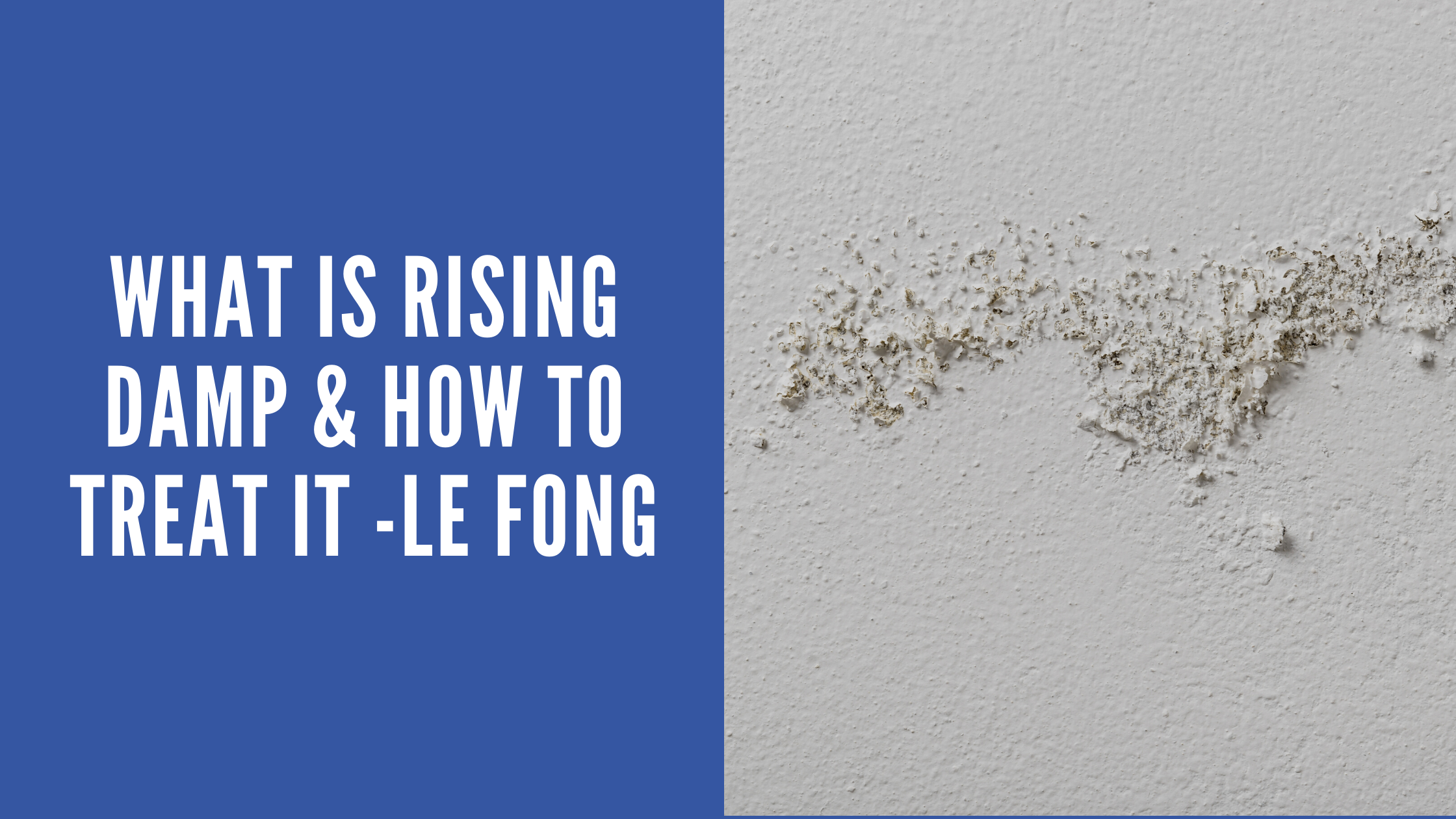 what is rising damp and how to solve it